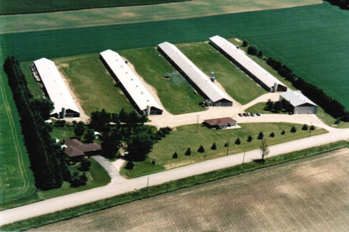 The Weeden Homestead.  A four barn Grandparent Turkey Breeder Facility south of New Hamburg, Ontario
